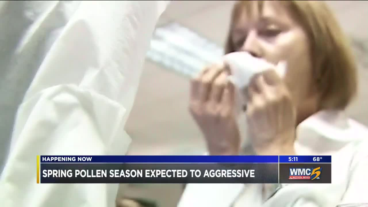 Pollen season expected to be aggressive this year
