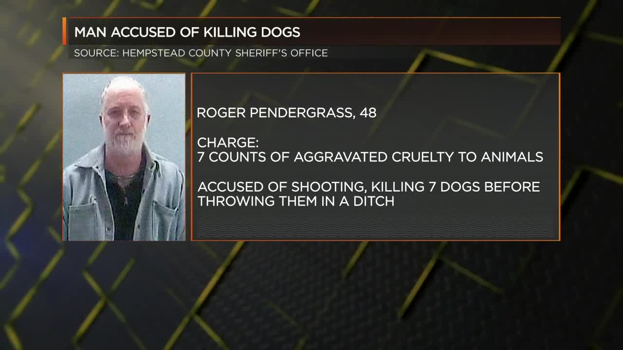 Man shot, killed 7 dogs before throwing them in a ditch