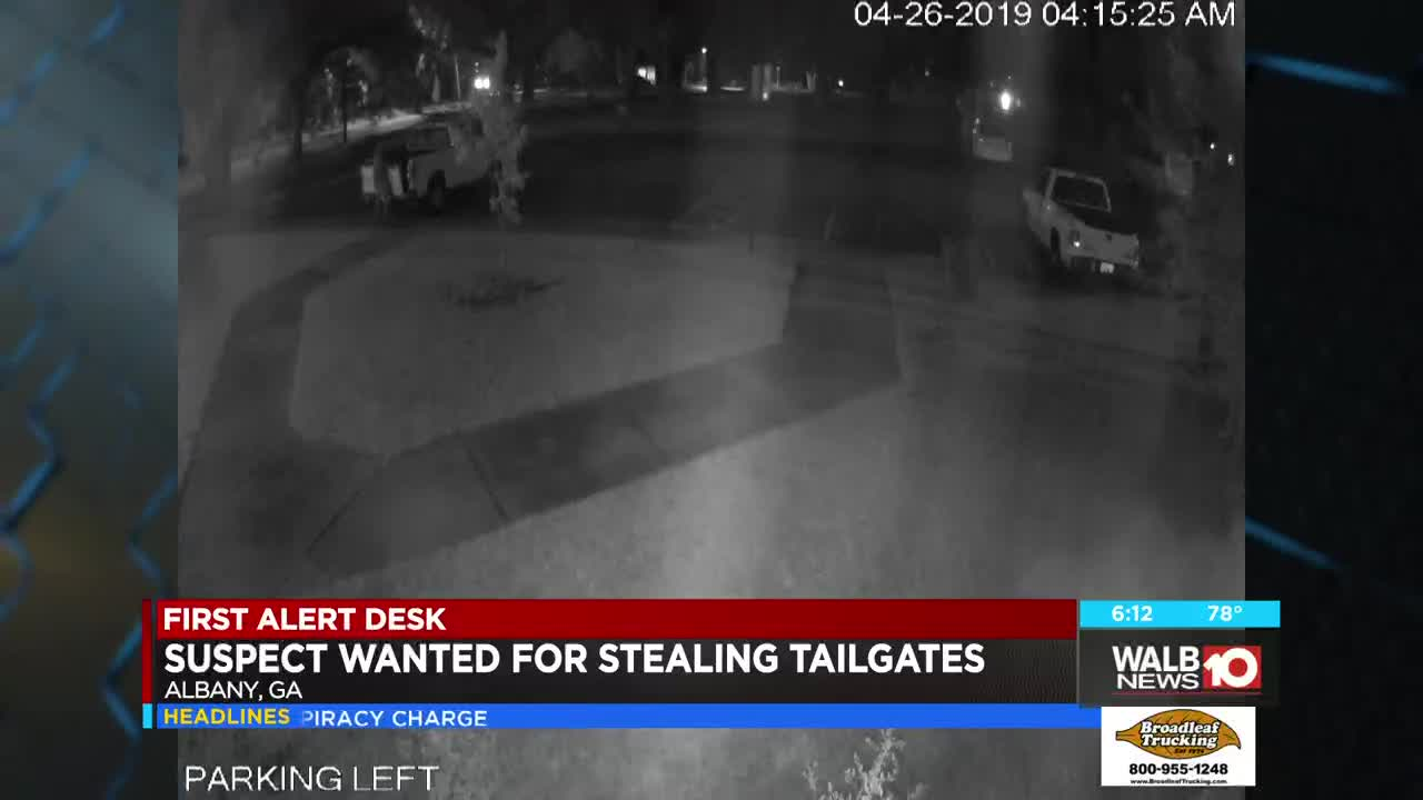 Albany police search for tailgate thief