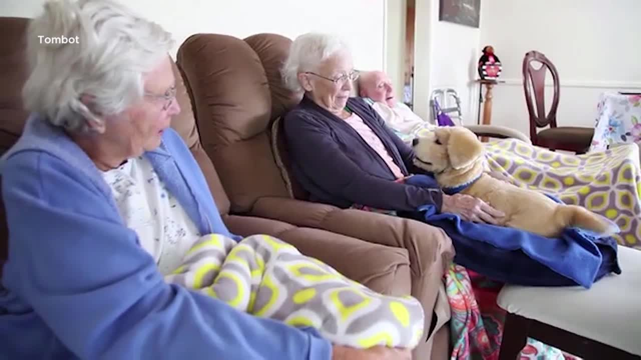 Robot therapy dog 'Jennie' helps improve man's life