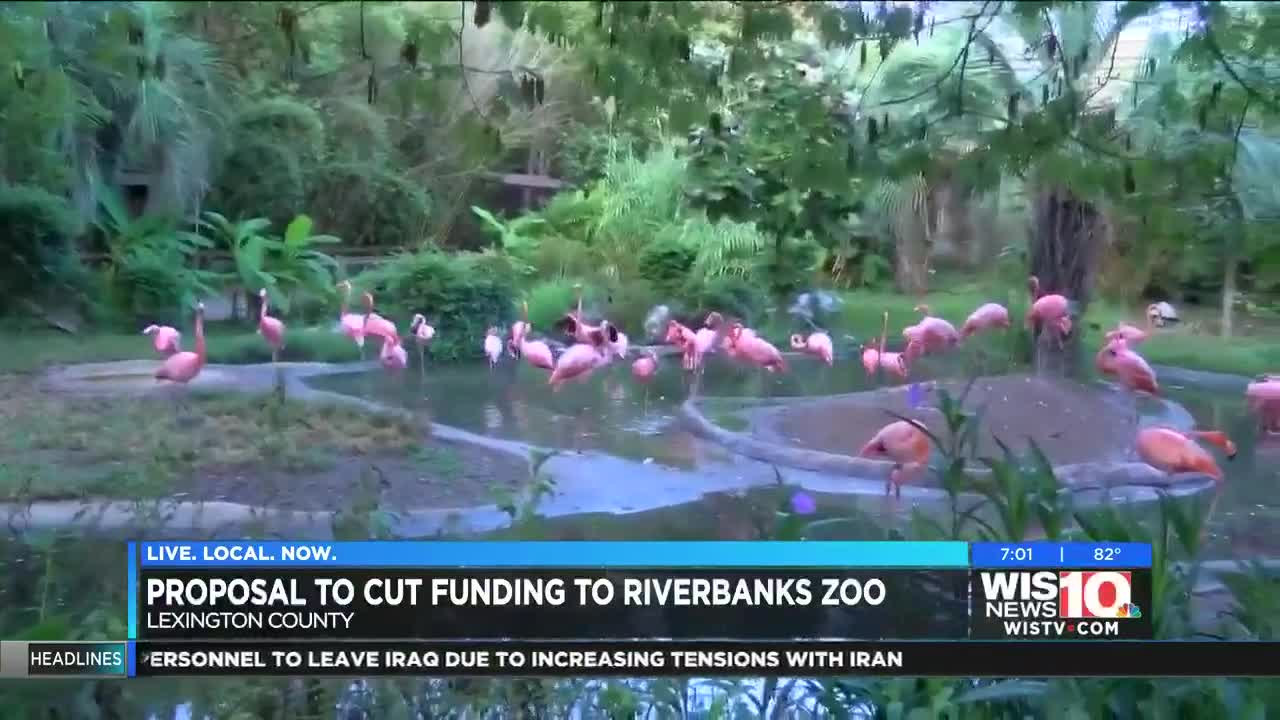 Lexington County could reduce yearly funding to Riverbanks Zoo