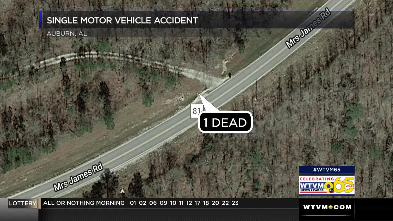 Auburn teen dies in fatal late-night single-vehicle accident on Lee