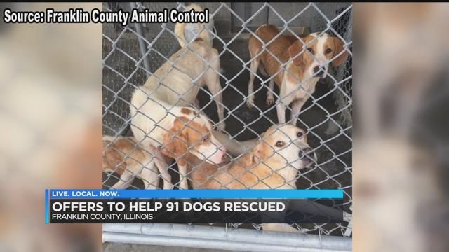 91 dogs removed from rural Franklin Co , IL home