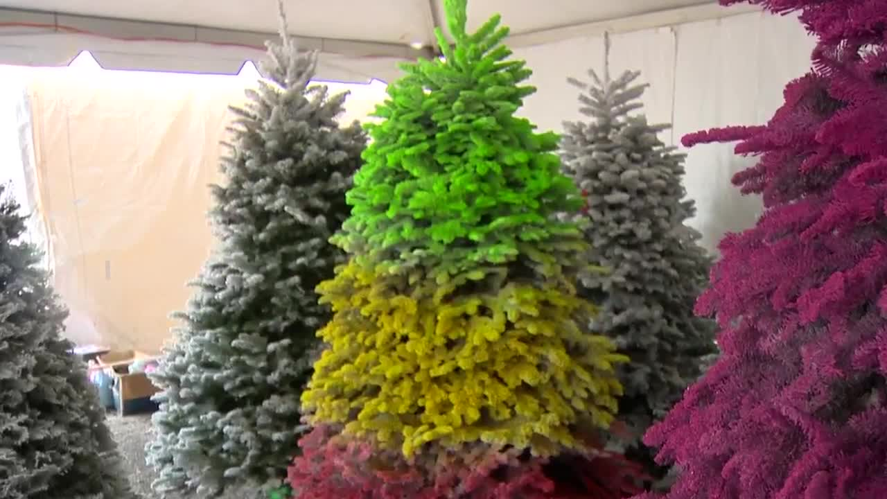 Colorful Christmas Trees Are A Thing And Mr Christmas Tree Is